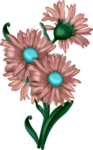 LH_Curious_Flower_016.png