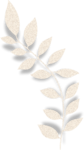 LH_Curious_Leaves_006.png