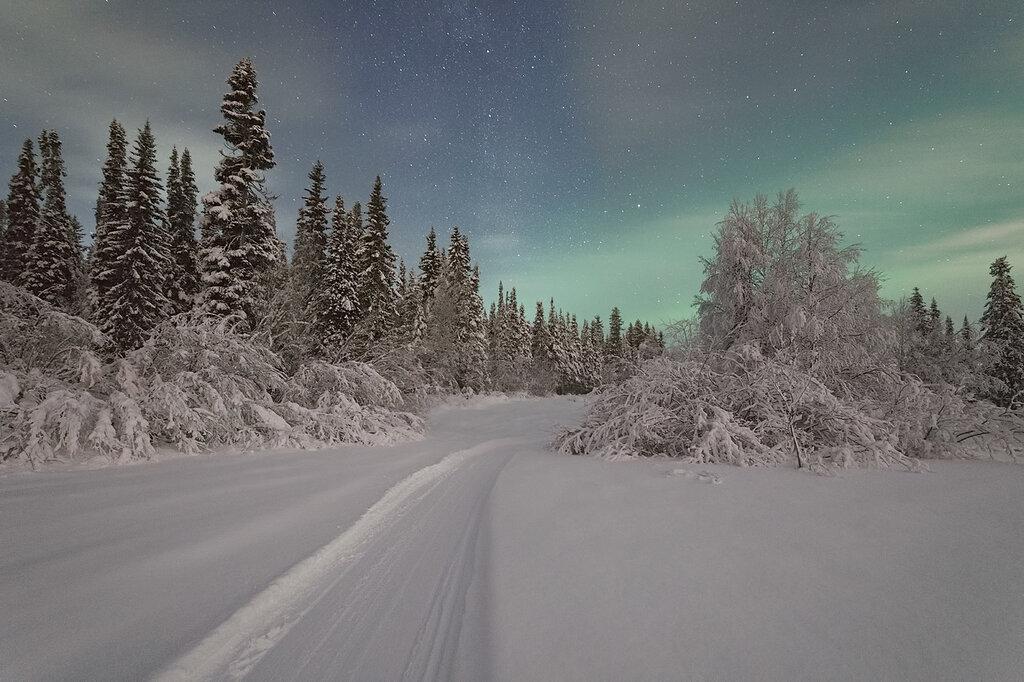 Морозная ночь севера