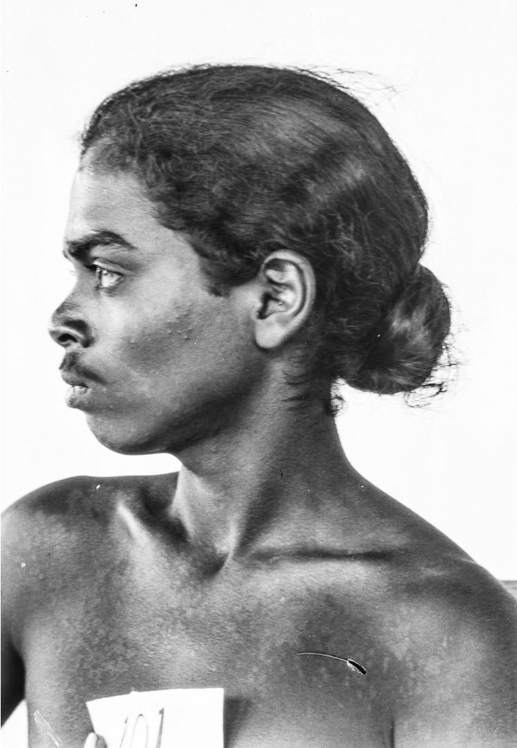 524. Горный сингалец