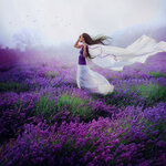 99px_ru_photo_122081_devushka_stoit_v_lavandovom_pole_s_razvevaushimsja_belim.jpg