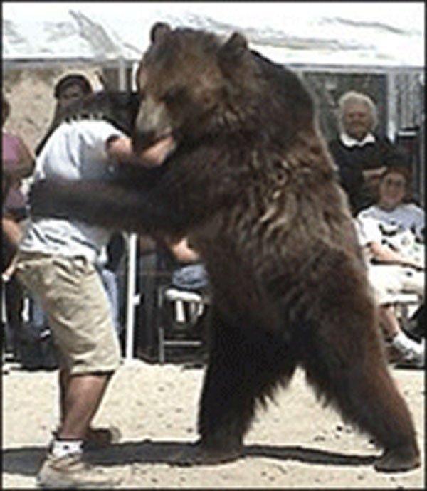 Борьба с медведями была популярным хобби в США, особенно в таких местах, как Алабама, где в 2006 год