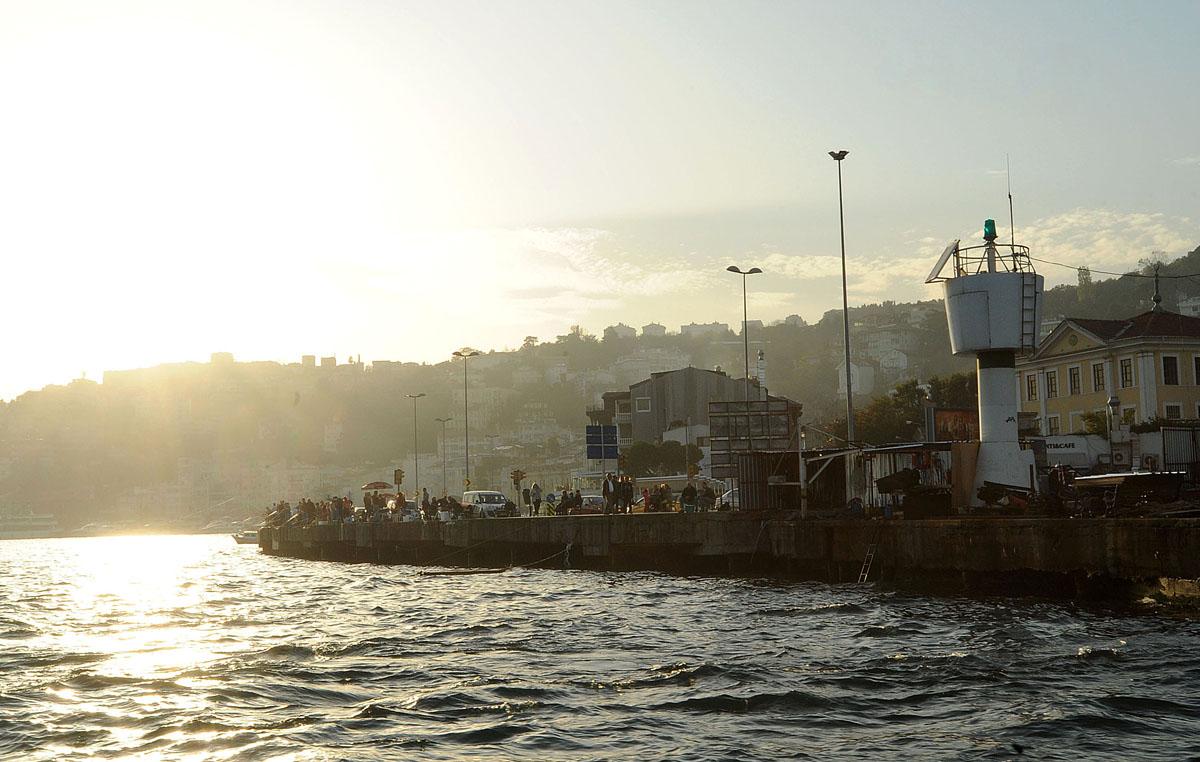 56. И, кстати, мы поняли, почему на набережных и мостах Стамбула в любое время суток так много рыбак