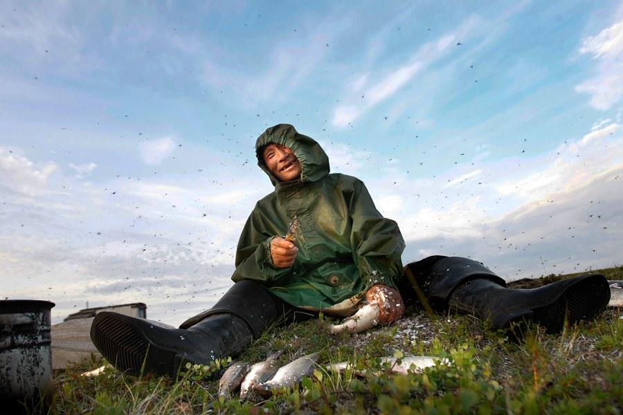 Полуостров Ямал. Фоторепортаж о жизни ненцев-оленеводов: