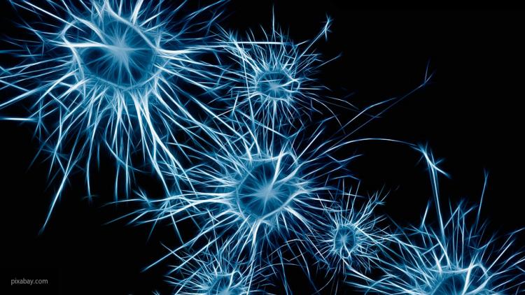 Мозг бесстрашных людей устроен подругому — Ученые