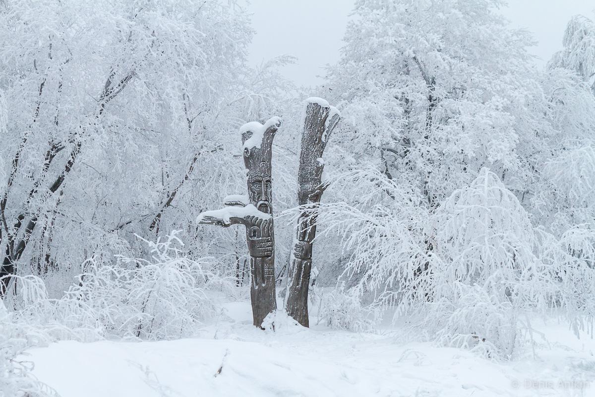 Кумысная поляна зима фото 5