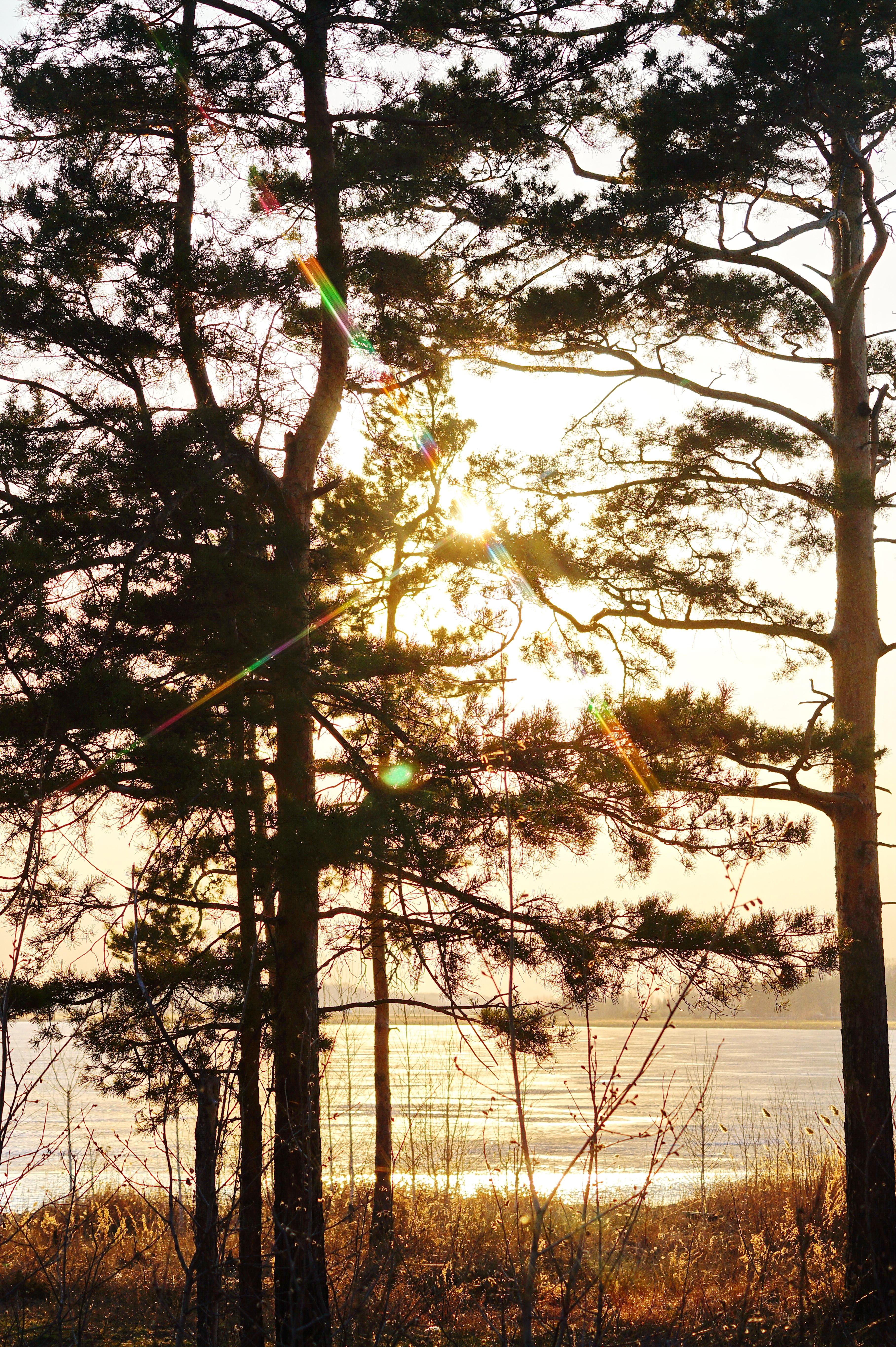Солнце на озере