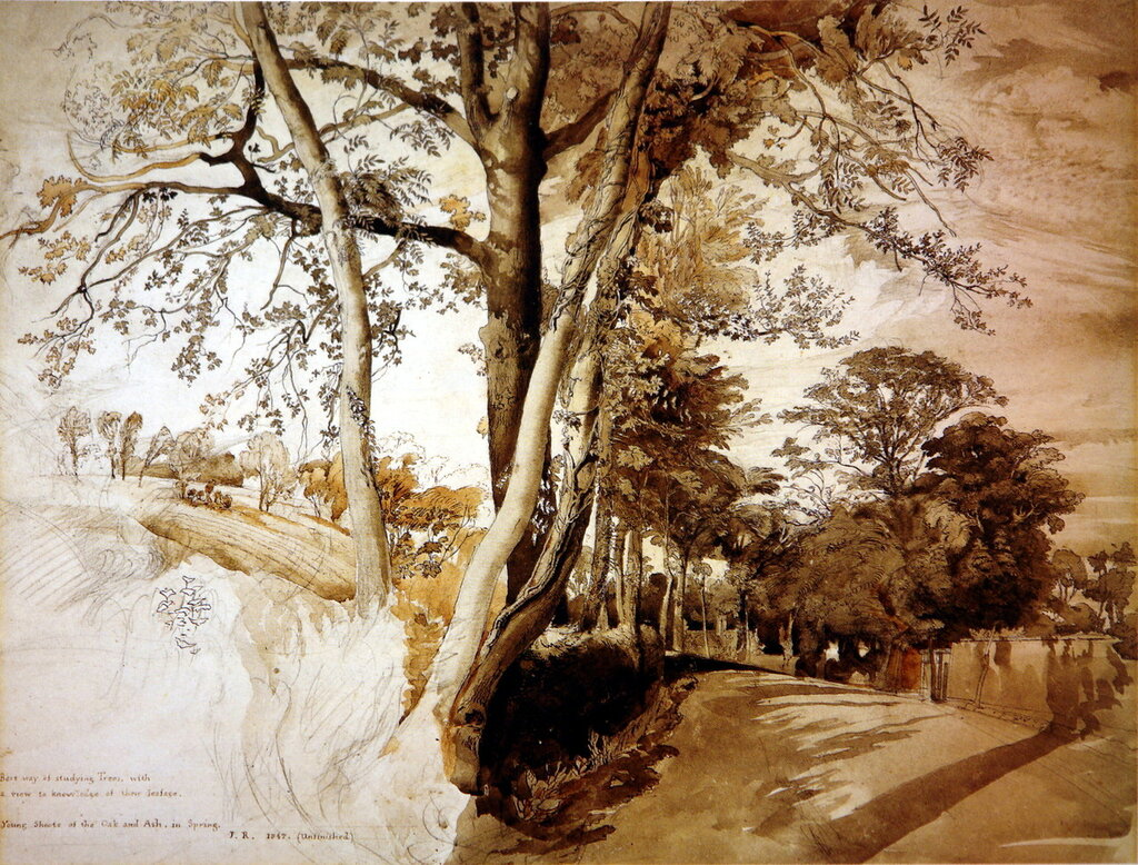 Trees_in_a_lane1847.jpg