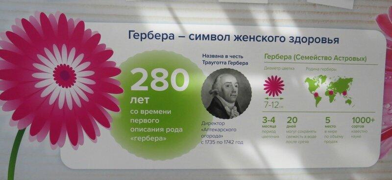 https://img-fotki.yandex.ru/get/197807/140132613.59a/0_21f290_6c7e7693_XL.jpg