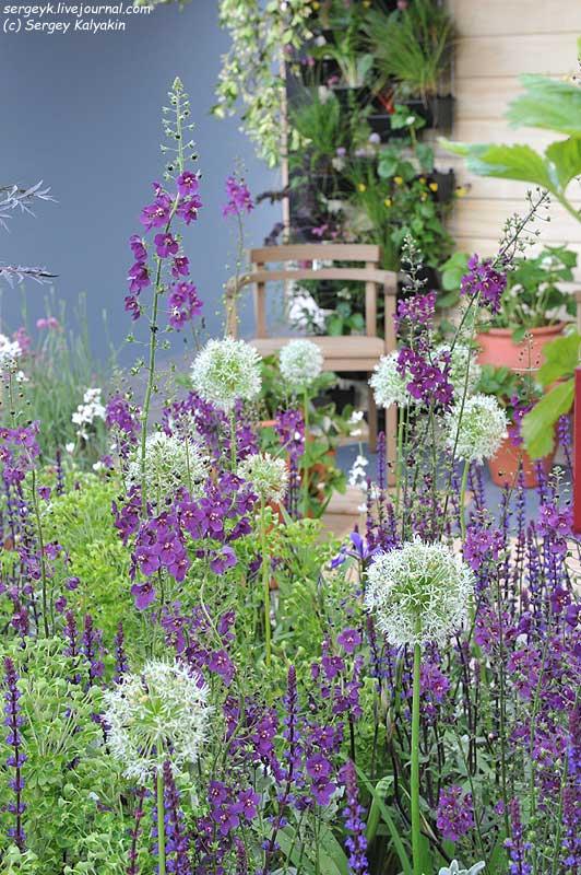 The RHS Greening Grey Britain Garden (46).jpg
