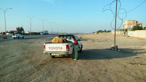 На дорогах Иордании