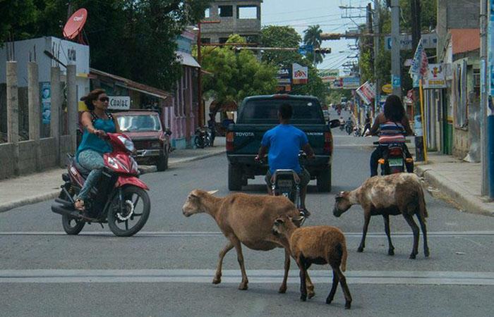 8. Доминиканская республика Ужасные дороги, несоблюдение правил дорожного движения – это все о Домин