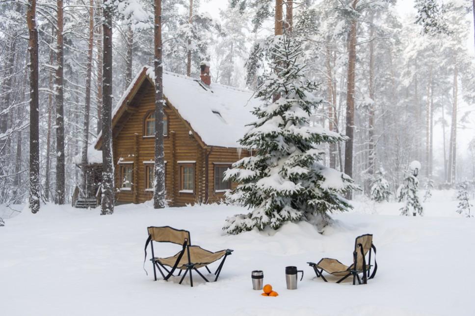 Лучший вариант отдыха от проблем и городской суеты в Ленинградской области (1 фото)