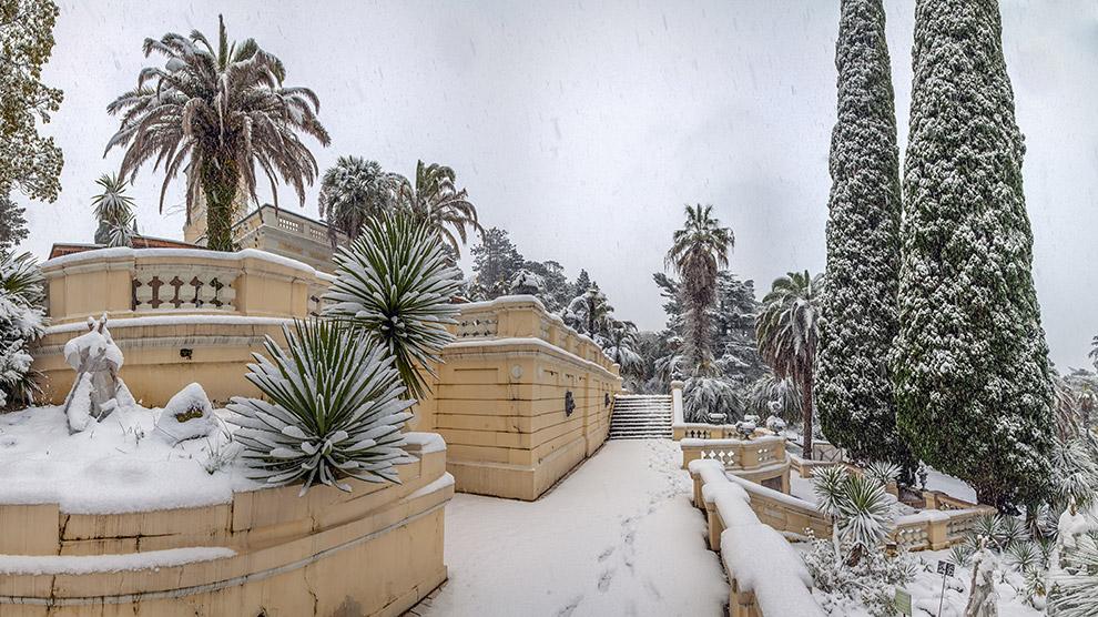 11. Главная аллея во время сильного снегопада.