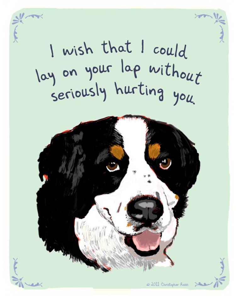 Tiny Confessions - Les hilarantes confessions illustrees de nos chiens et chats