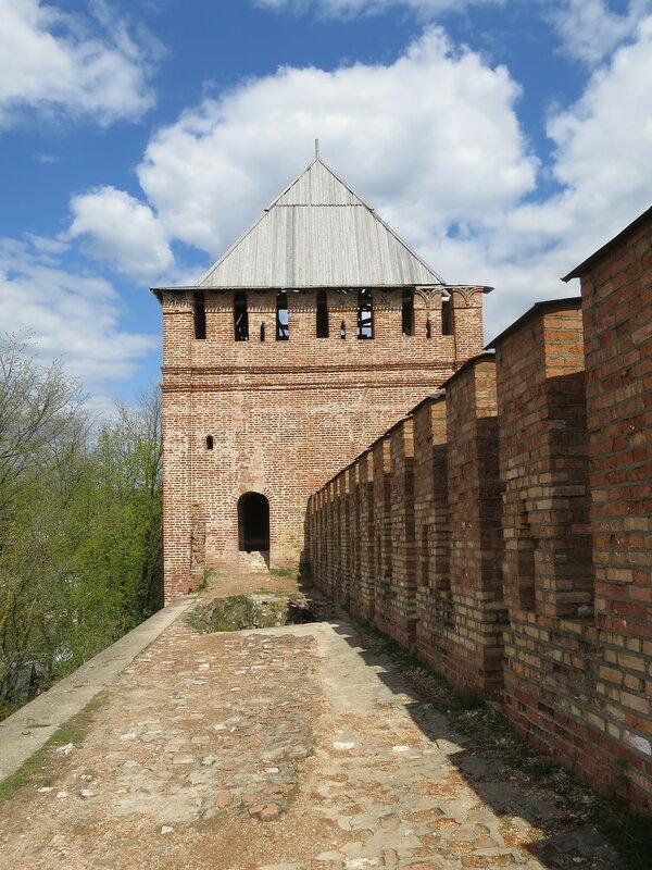 Башня Позднякова (8). Вид со стены.