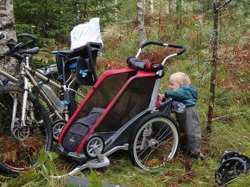 ребенок и багажник велоприцепа Thule Chariot Cougar