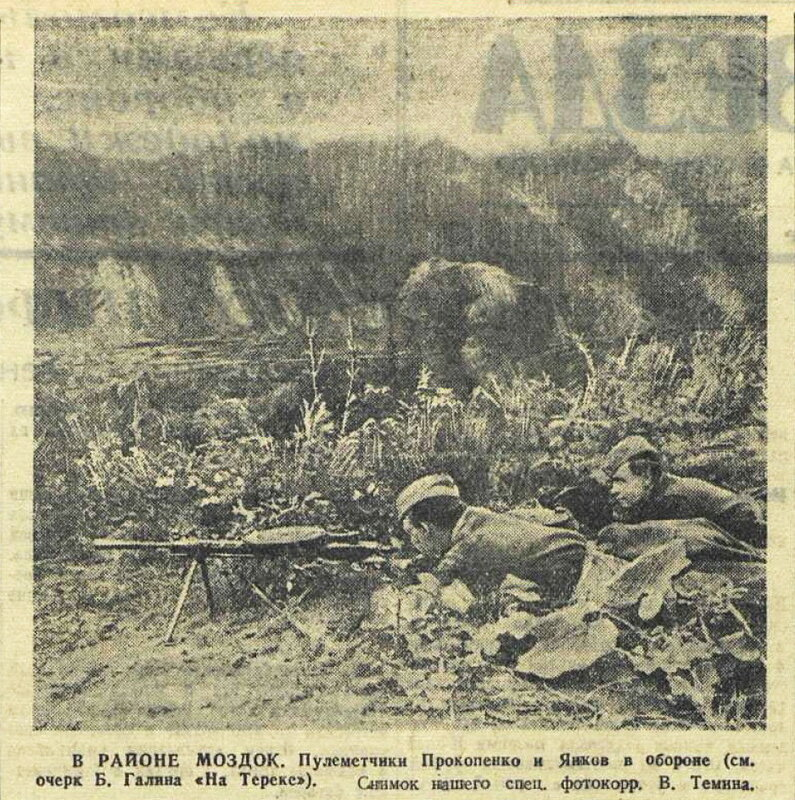 «Красная звезда», 6 сентября 1942 года, битва за Кавказ