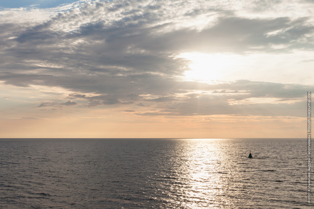 белое море картинки фото