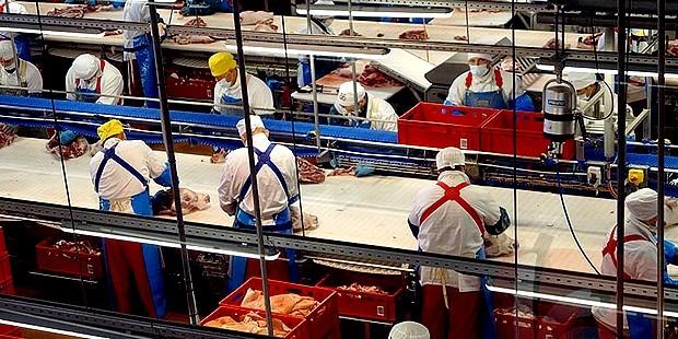 ВКурской области открывается высокотехнологичное мясоперерабатывающее предприятие