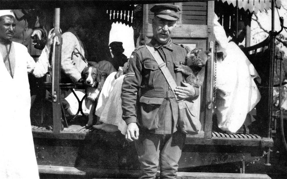 Турецкая кавалерия, 1917 год. (Фото National Archives):