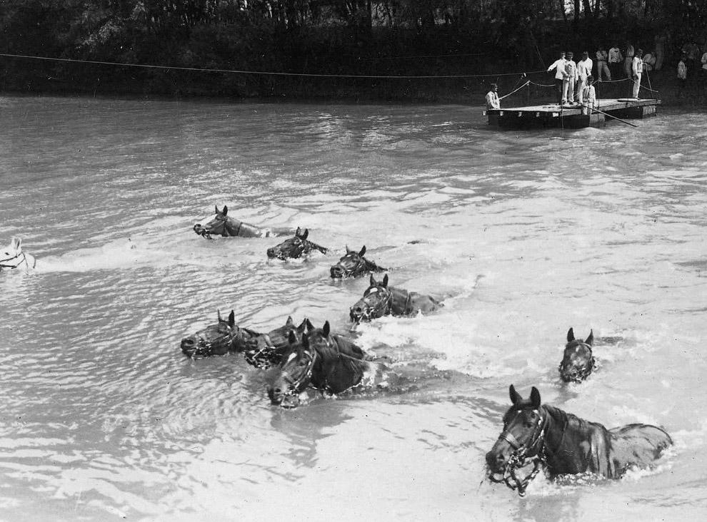 Силуэт солдата на коне. (Фото National Library of Scotland):