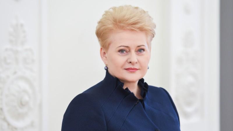 НАТО очень  медлительный— руководитель  Литвы