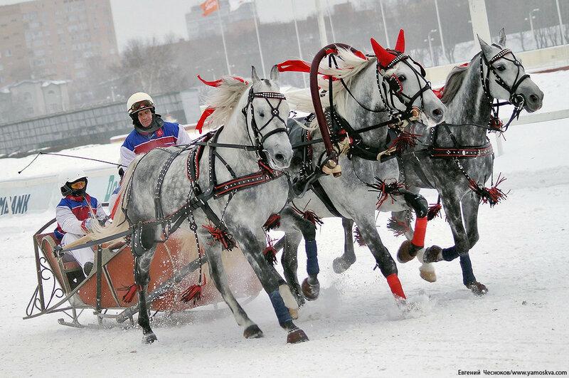 Зима. ЦМИ. Русская тройка. 22.01.17.14..jpg