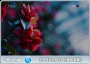 Windows 8.1 Pro 18543 x86-x64 RU DREI-2017