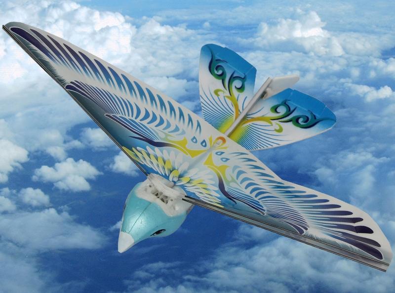 E-BIRD