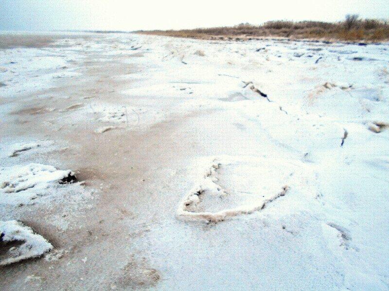 Скомконность ледяная ... В походе декабрьском, снежно-туманном,