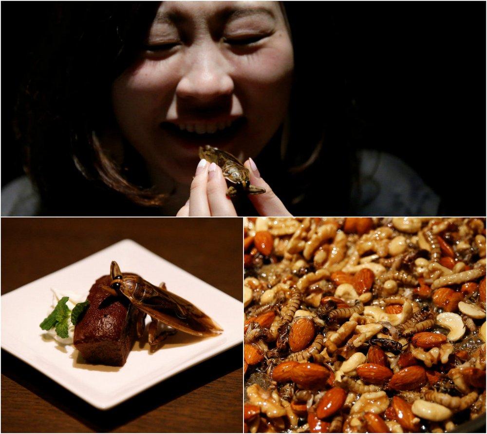 Японцы отпраздновали День Святого Валентина сладостями с насекомыми