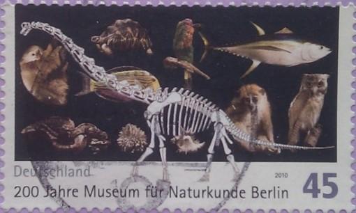 2010 200лет муз естествознания в берлине 45
