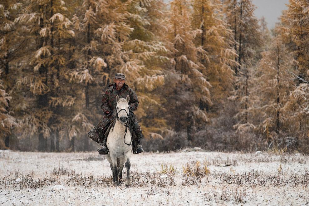 8. Роскошные рога, подстать месту. (Фото Joel Santos):
