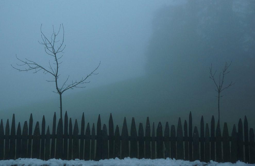 12. Честно говоря, утро в Одуванчиковой долине я представлял в ином свете (оранжевое солнышко,