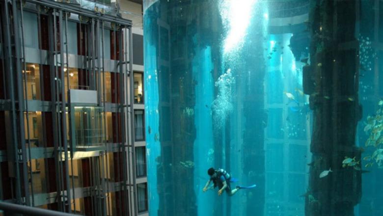 Подводное плавание не выходя из помещения.