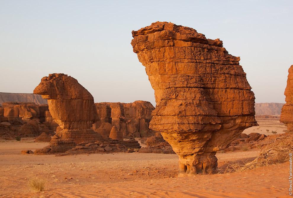 Закат. Также смотрите статью « Зеленая пустыня Сахара ».