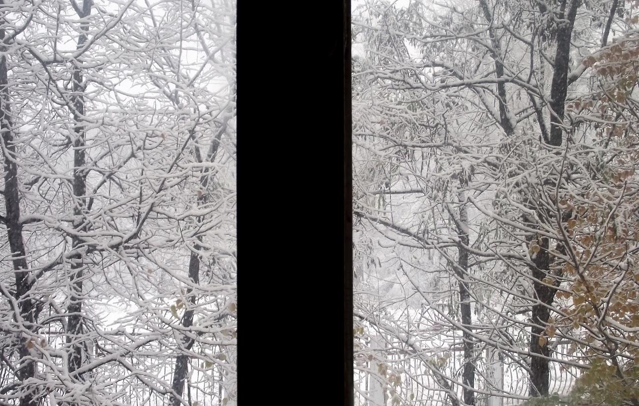 За моим окном