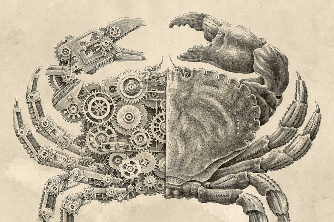 Mechanical Biology – The illustrations by Steeven Salvat (12 pics)