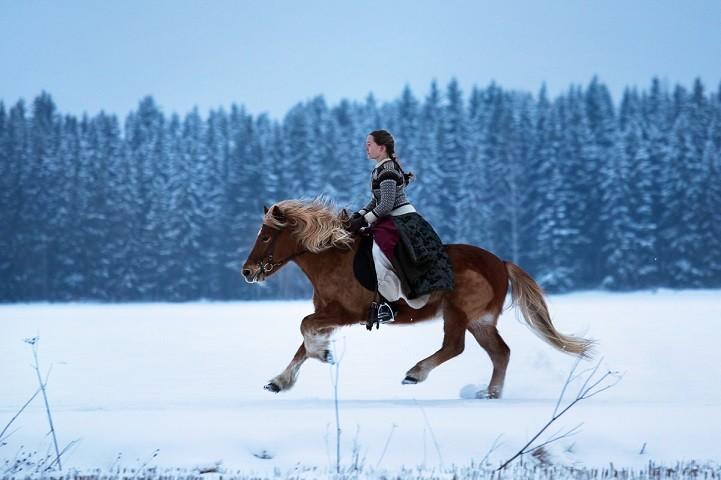 Arctic Love