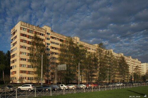Суздальский пр. 109
