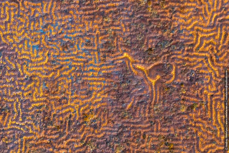 Фотографии снятые крупным планом, старая краска на ржавом железе