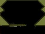 asamn00220-16.png