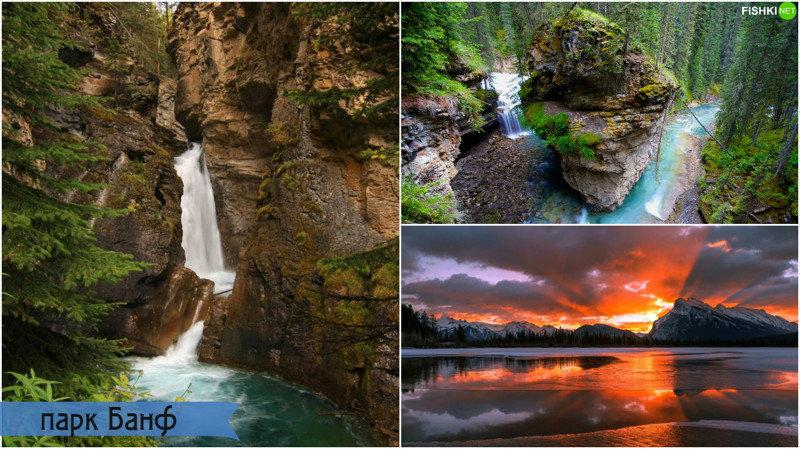 Однако главной локацией съемок «Выжившего» стали канадские Скалистые горы, которые входят в сост
