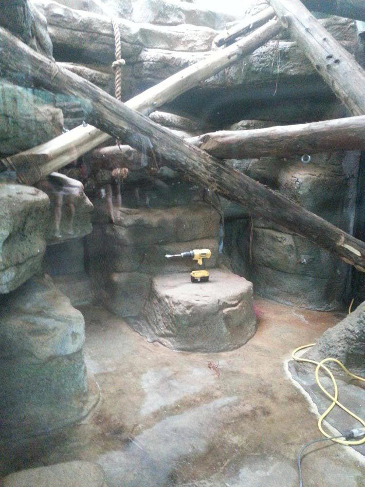 Это был местный зоопарк. Мы развлекались как могли.