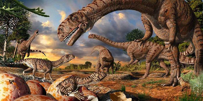 Яйца динозавров обнаружили вАргентине