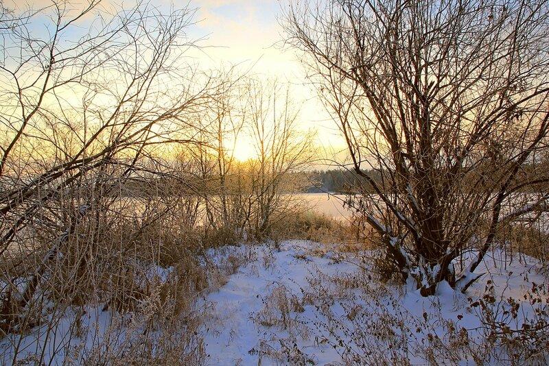 Зимний пейзаж озера Жуково (Кирово-Чепецк): покрытая льдом гладь озера, прибрежные кусты и скатывающееся за лес закатное солнце
