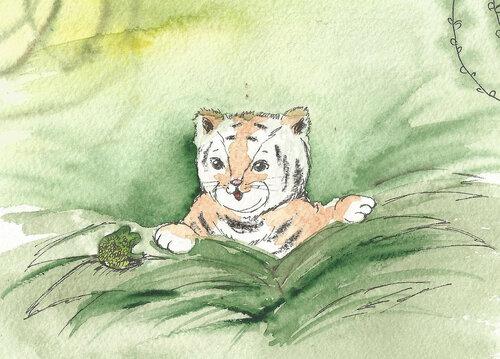 джунгли тигр.jpg
