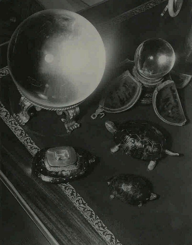 1950. Улица Фобур Сен-Жак, 81. Интерьеры