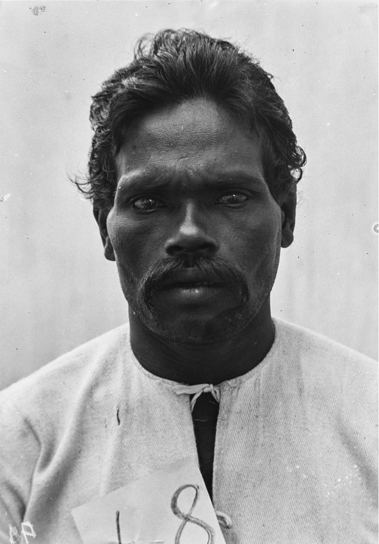 518. Сингалец